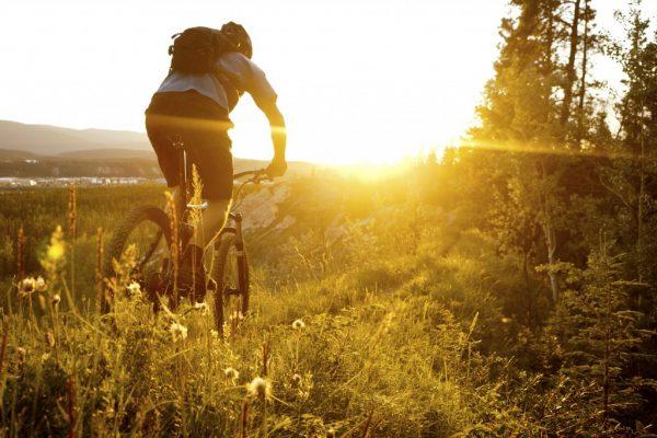 Cykelägare titta hit